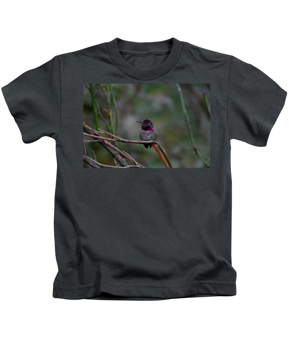 Animals Kids T-Shirt featuring the photograph Look He Is Turning Purple by Kym Backland