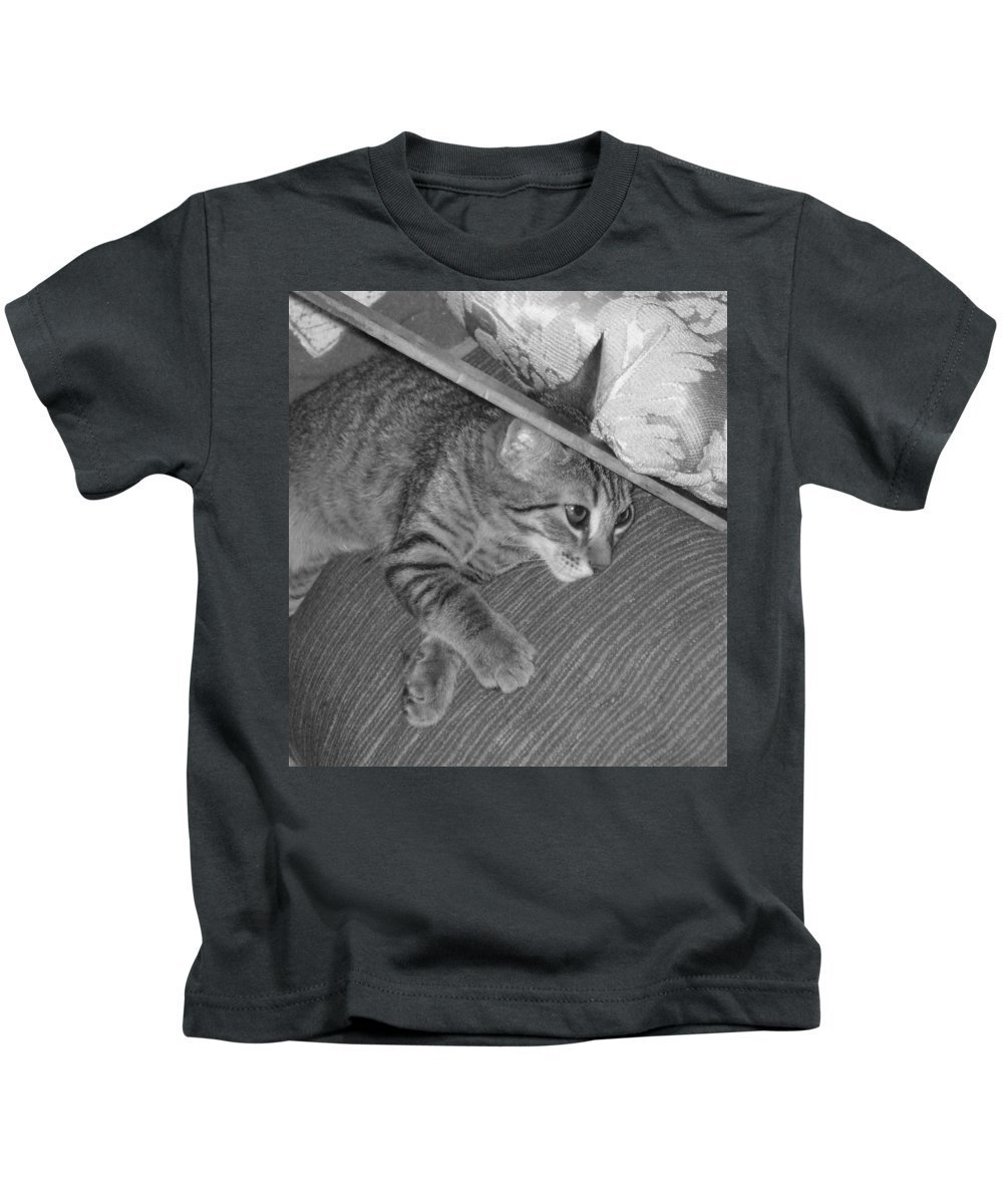 Kitten Kids T-Shirt featuring the photograph Model Kitten by Pharris Art