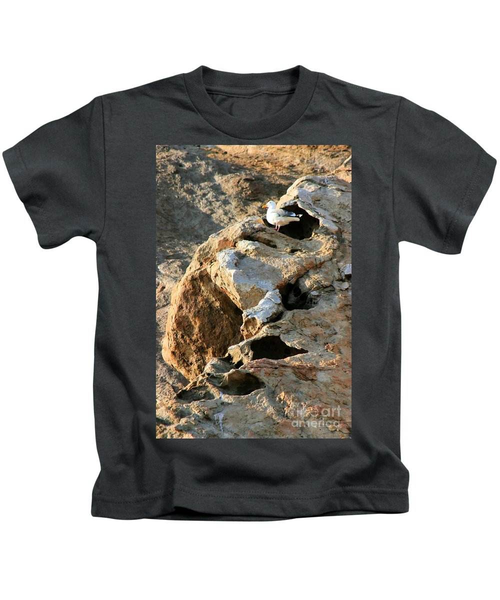 Seagull Kids T-Shirt featuring the photograph Morro Rock Nesting by Tap On Photo
