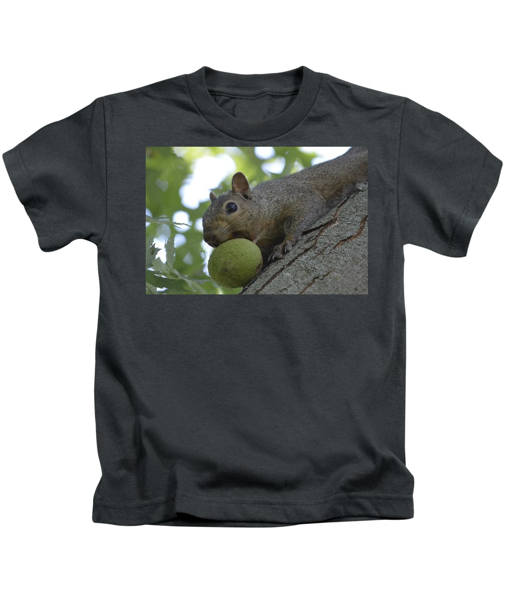 Squirrel Kids T-Shirt featuring the photograph My Ball by Bonfire Photography