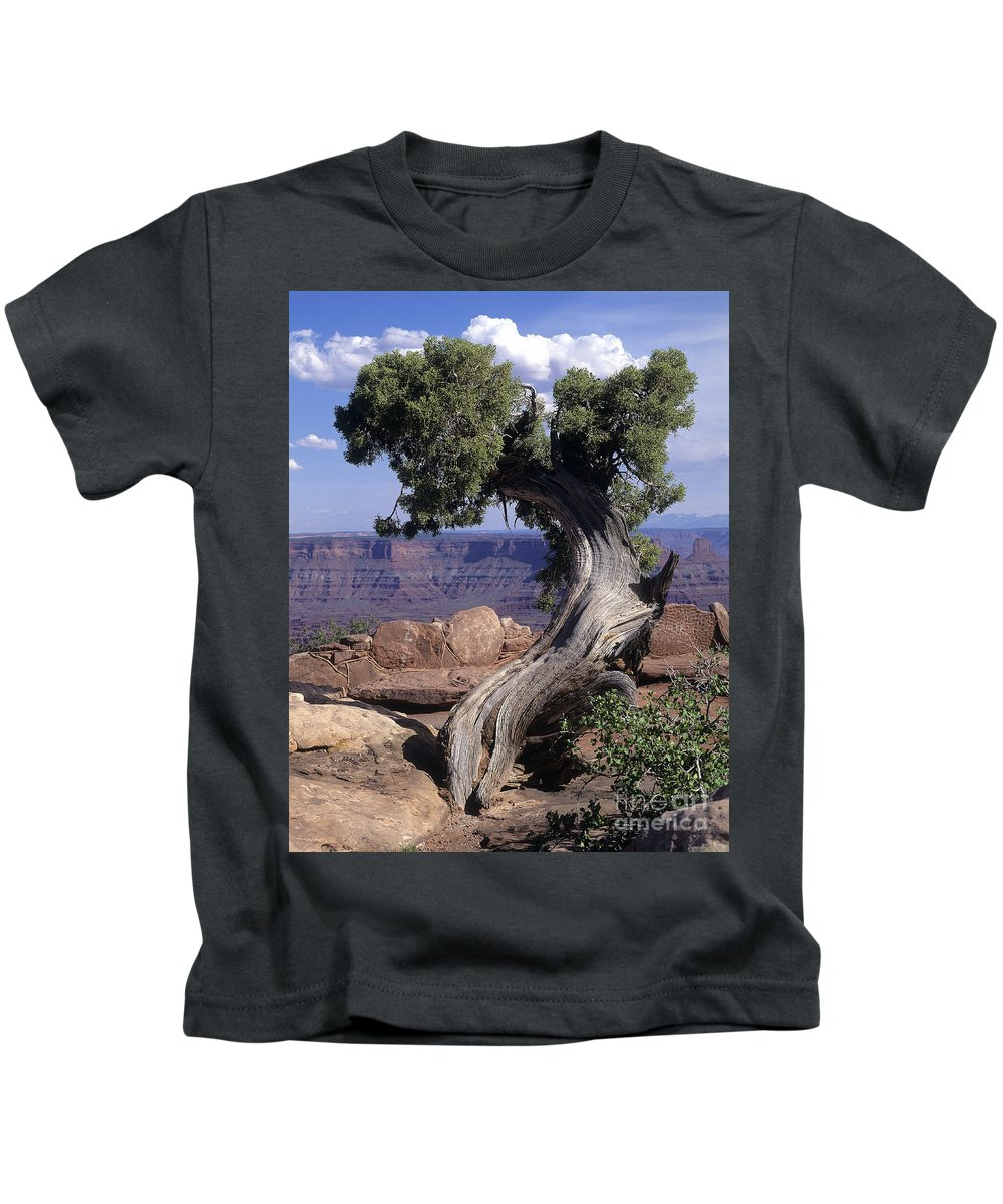 Tree Kids T-Shirt featuring the photograph Old Tree by Judy Bottler