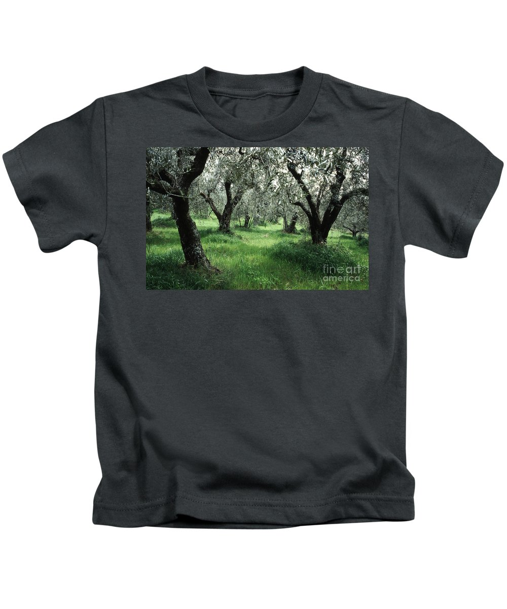Heiko Kids T-Shirt featuring the photograph Olive Grove by Heiko Koehrer-Wagner