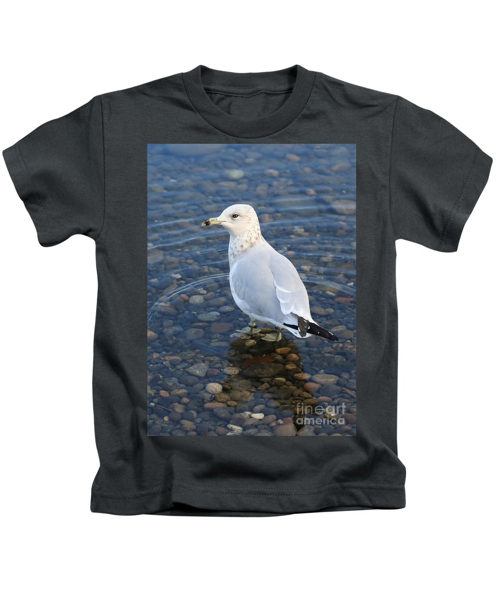 Gull Kids T-Shirt featuring the photograph On The Rocks by Carol Groenen