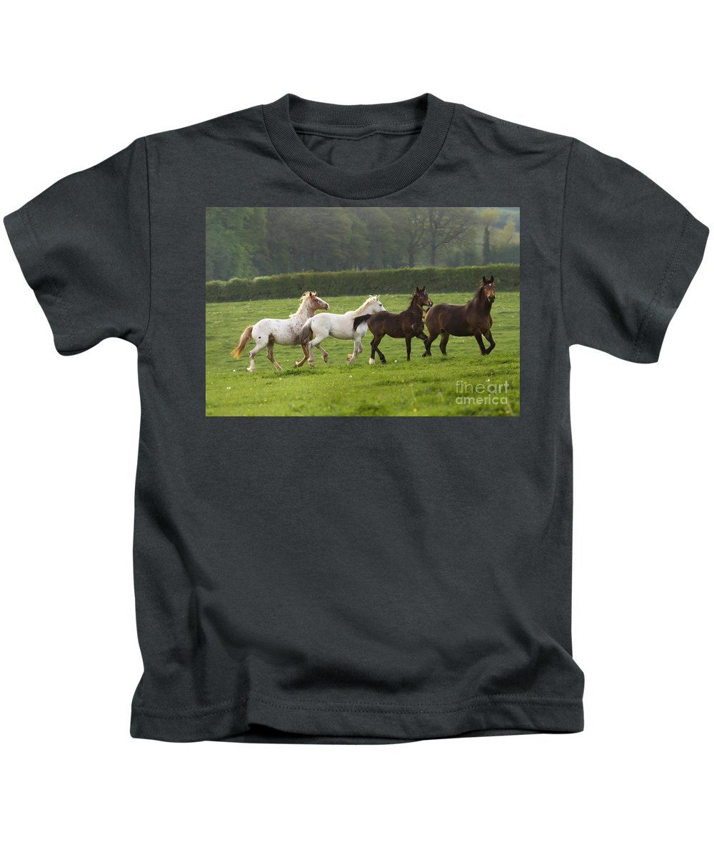 Horse Kids T-Shirt featuring the photograph One After One by Angel Ciesniarska