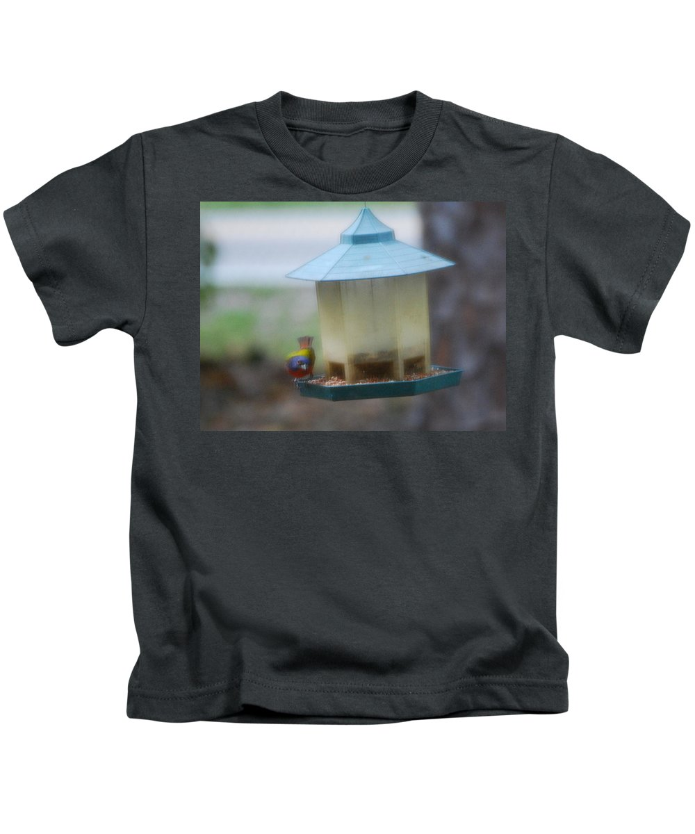 Feeding At Bird Feeder Kids T-Shirt featuring the photograph Painted Bunting by Robert Floyd
