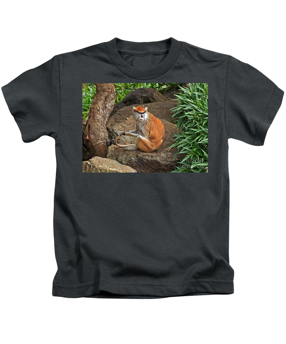 Kate Brown Kids T-Shirt featuring the photograph Patas Monkey by Kate Brown