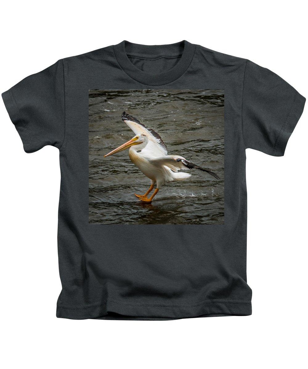 Pelican Kids T-Shirt featuring the photograph Pelican Landing by Paul Freidlund