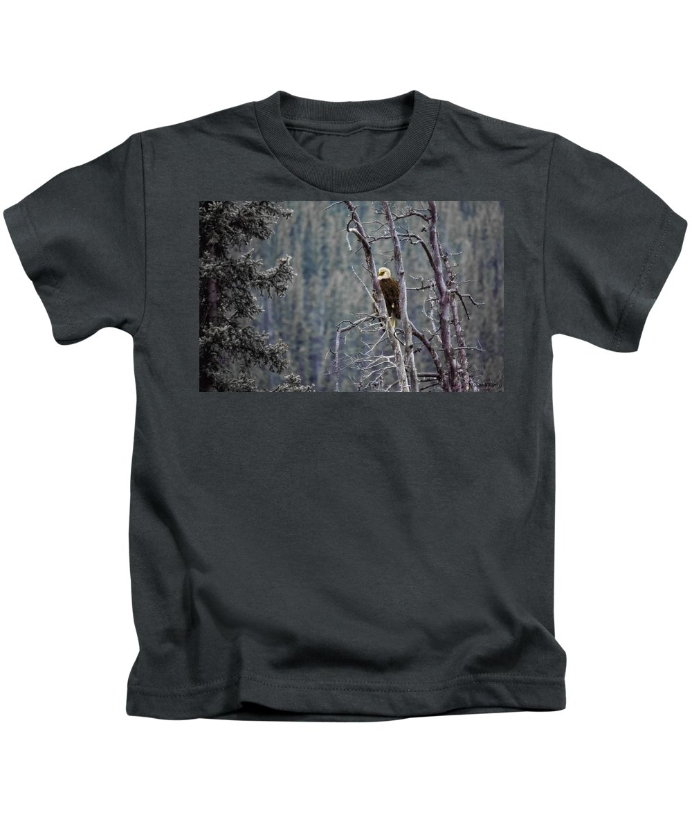 Feather Kids T-Shirt featuring the photograph Perched by Jo-Anne Gazo-McKim