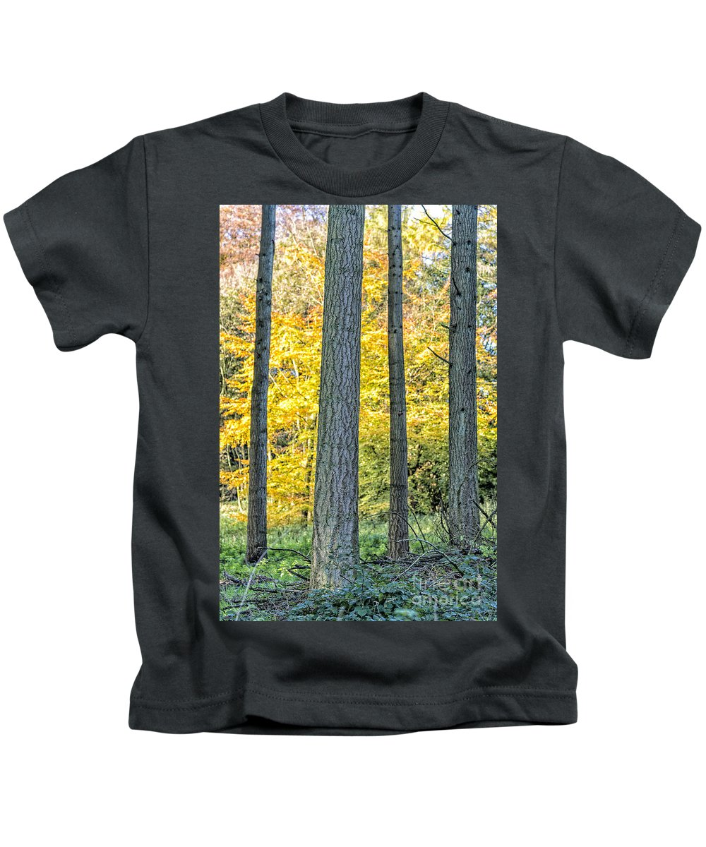 Forest Kids T-Shirt featuring the photograph Pine Forest In The Autumn by Julian Eales