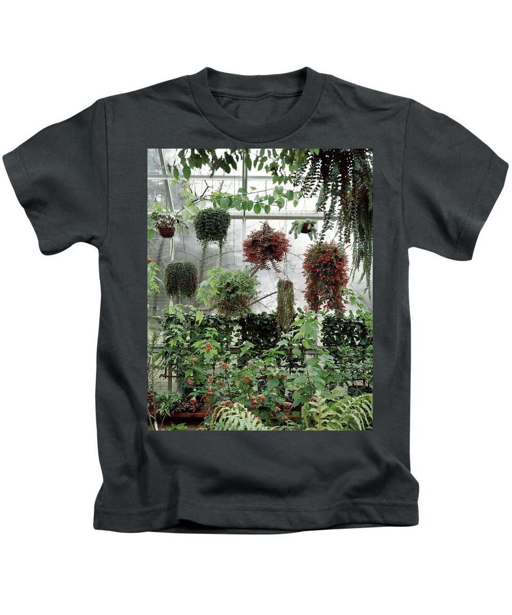 Indoors Kids T-Shirt featuring the photograph Plants Hanging In A Greenhouse by Wiliam Grigsby