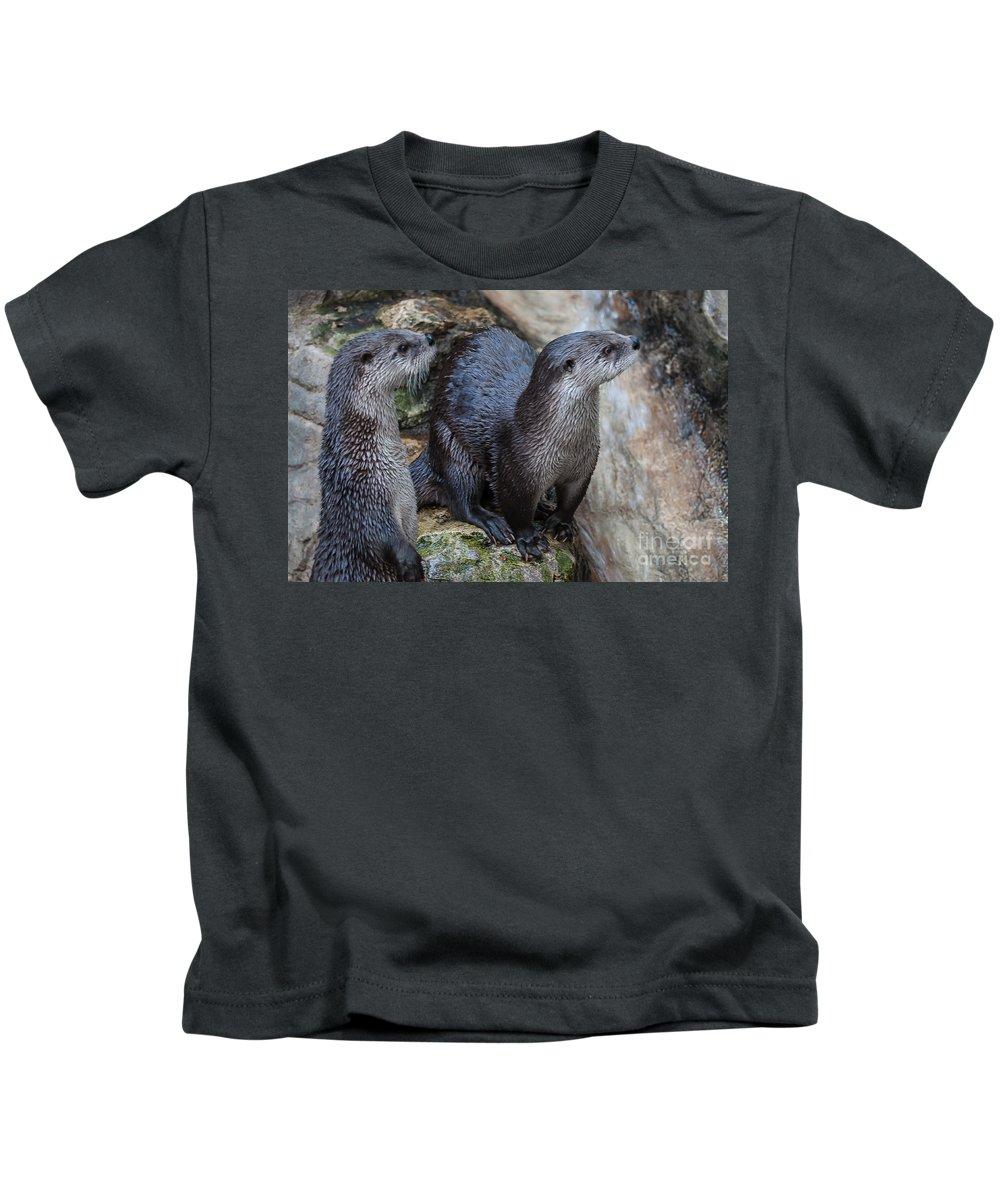 River Otter Kids T-Shirt featuring the photograph Playful Buddies by Bianca Nadeau