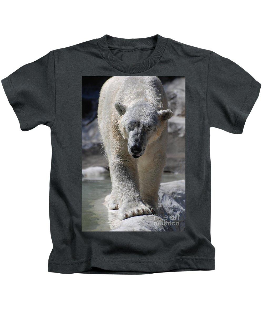 Polar Bear Kids T-Shirt featuring the photograph Polar Bear by DejaVu Designs