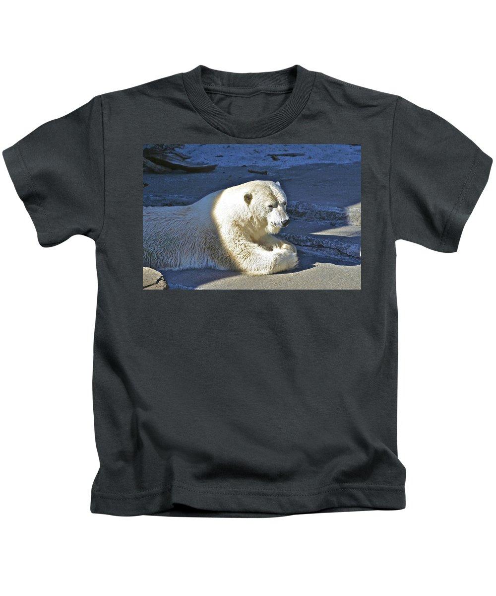 Animals Kids T-Shirt featuring the photograph Polar Bear by SC Heffner