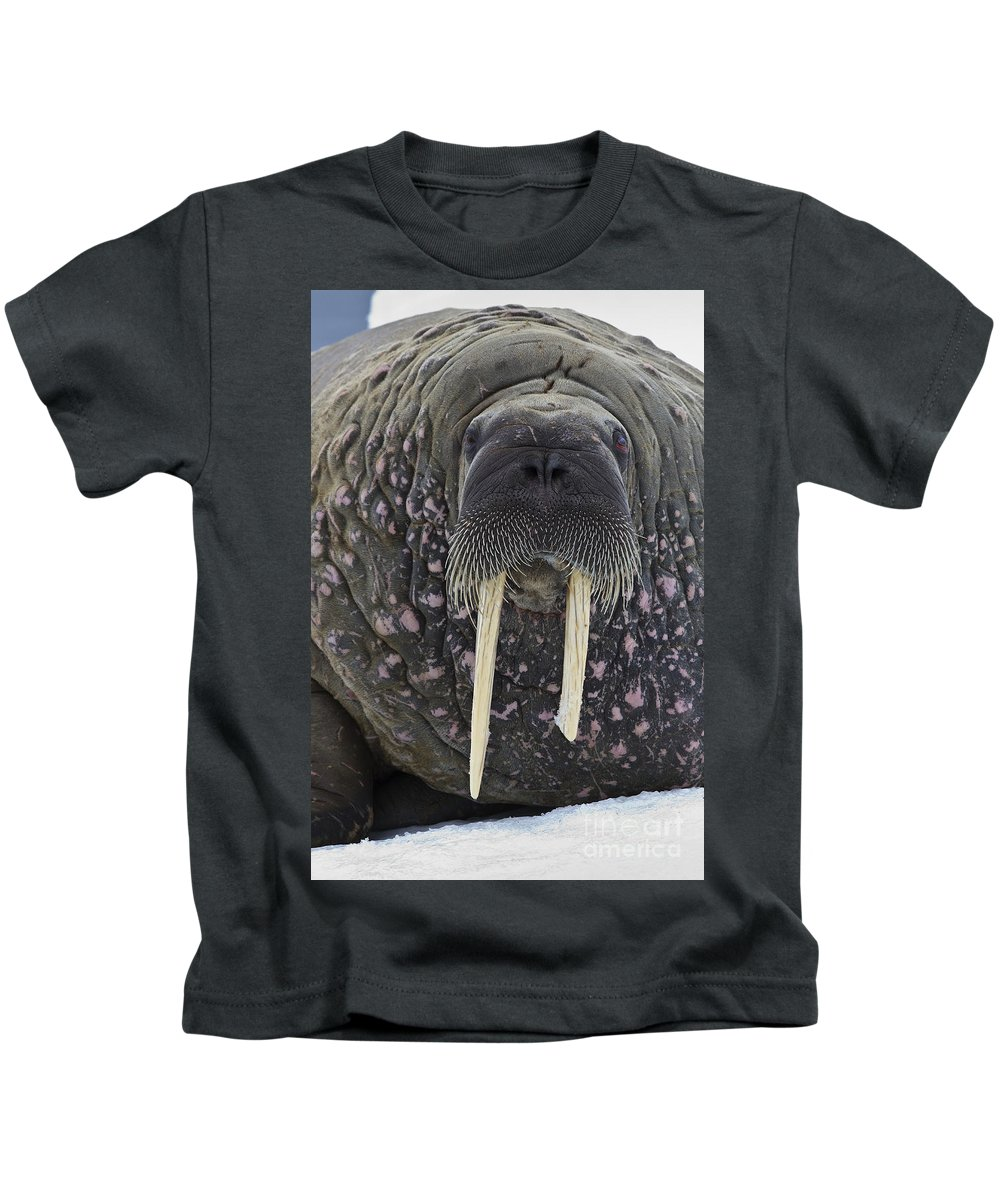 Atlantic Walrus Kids T-Shirt featuring the photograph Portrait Of A Walrus by Jean-Louis Klein and Marie-Luce Hubert
