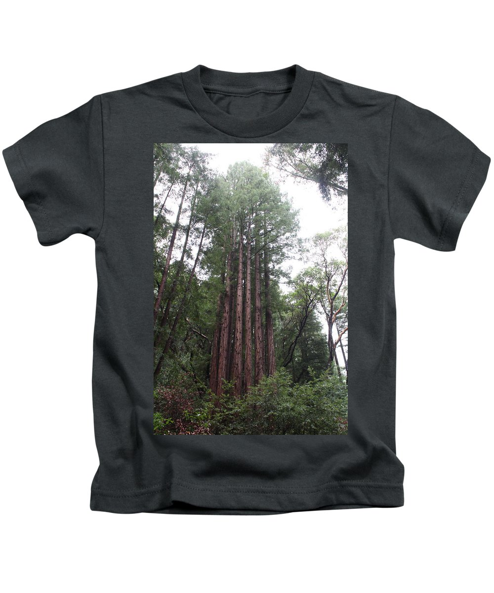 California Kids T-Shirt featuring the photograph Redwood Fairy Ring by Nicholas Miller