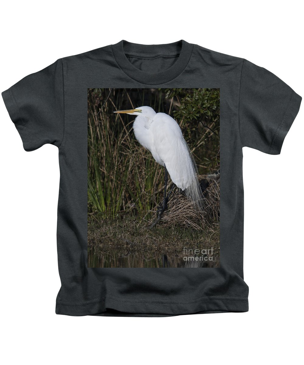 Great Kids T-Shirt featuring the photograph Ruffled Feathers by Dale Powell