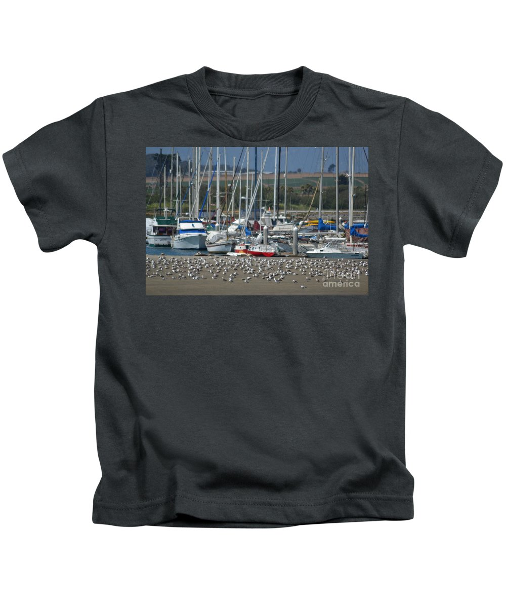 California Kids T-Shirt featuring the photograph Sailing Sailing by Mary Rogers