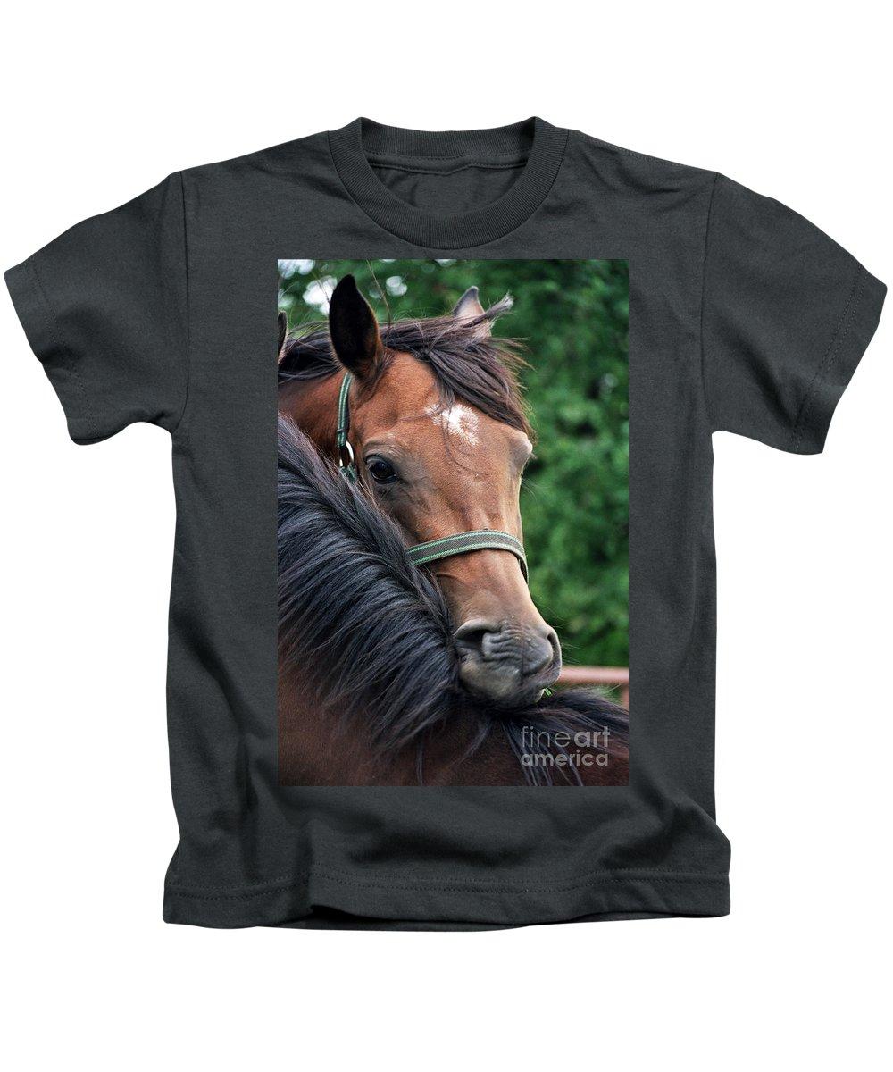 Horse Portrait Kids T-Shirt featuring the photograph Scratch My Back by Angel Ciesniarska