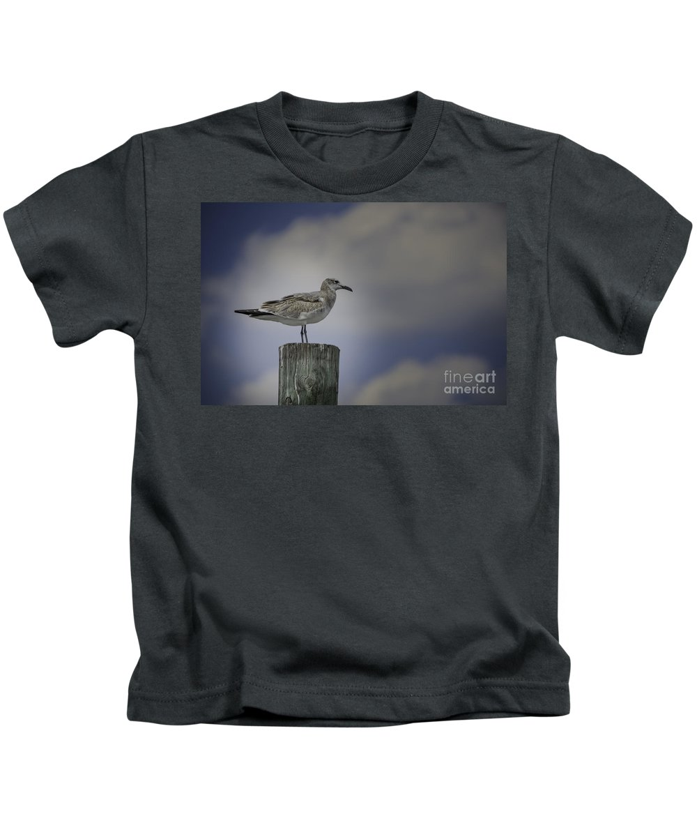 Bird Kids T-Shirt featuring the photograph Seagull by Dale Powell