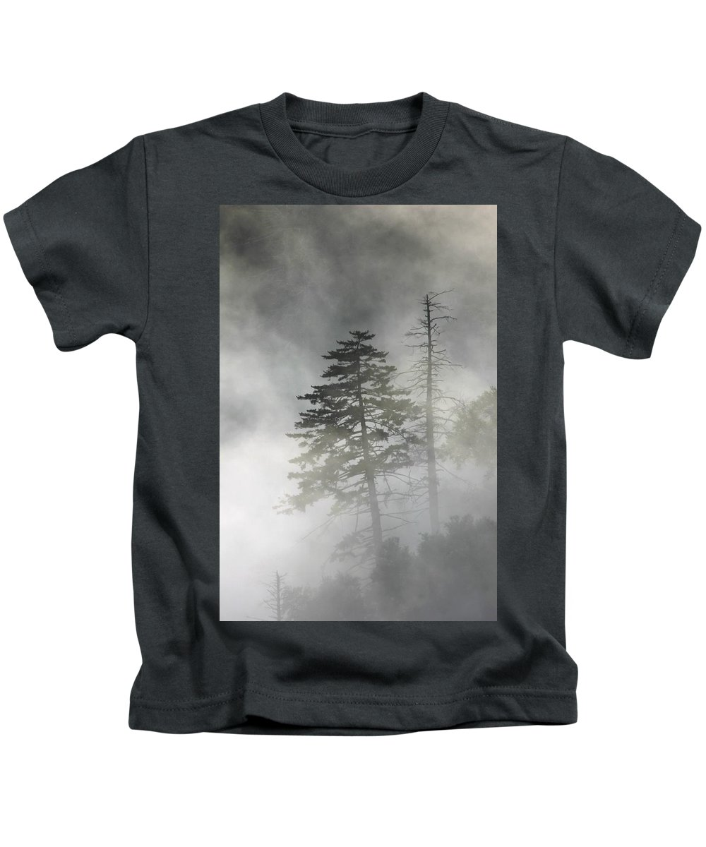 Smoky Mountains Kids T-Shirt featuring the photograph Smoky Mountain Mist by Nunweiler Photography