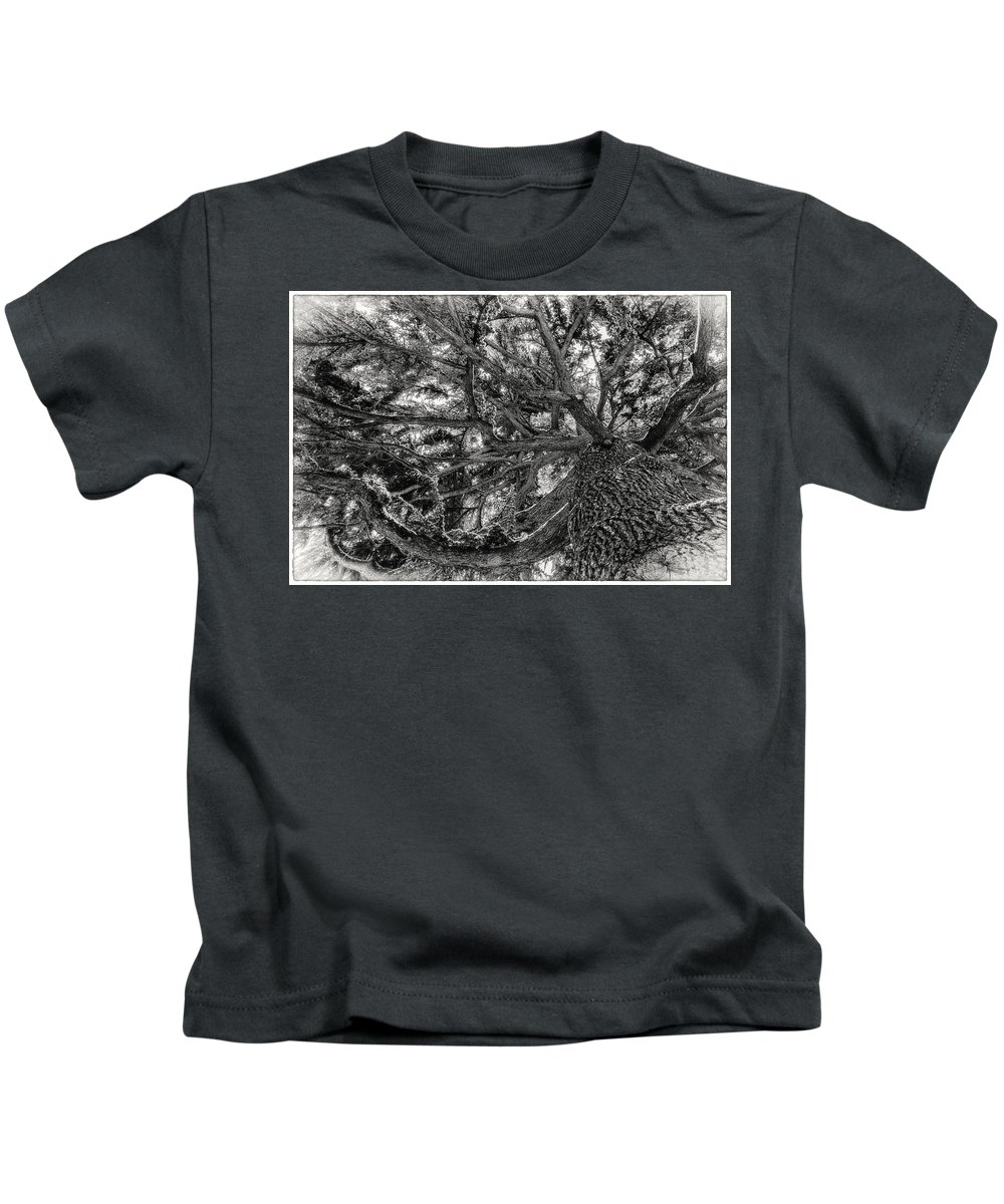 Chilly Kids T-Shirt featuring the photograph Snow Covered Pine Tree Seen From Below by Peter v Quenter