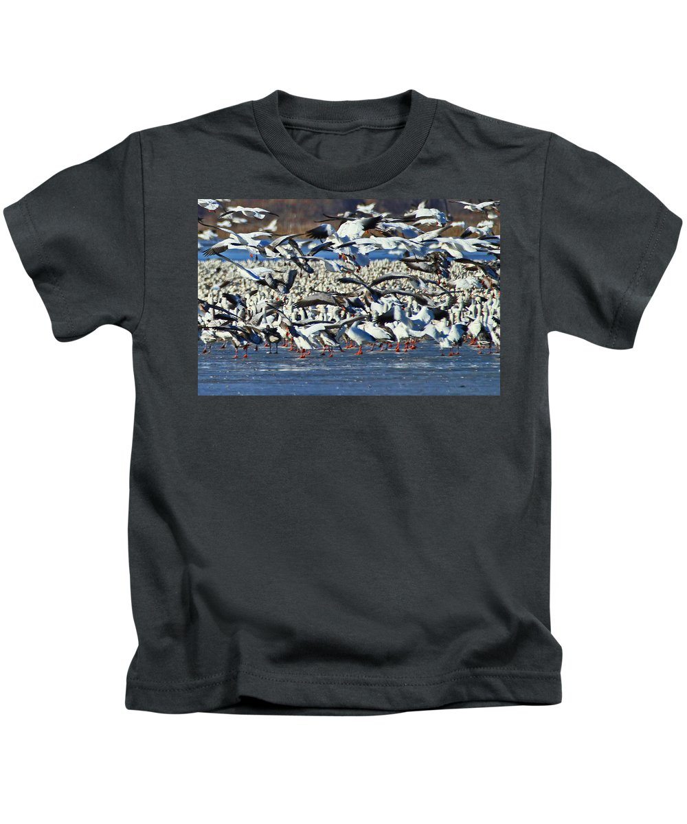 Snow Geese Kids T-Shirt featuring the photograph Snow Geese by Deb Buchanan