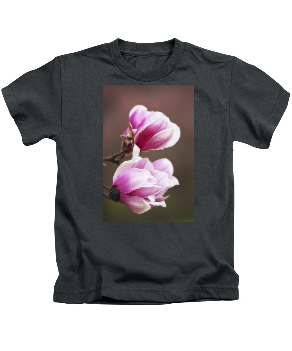 Magnoila Blossoms Kids T-Shirt featuring the photograph Soft Magnolia Blossoms by Shelly Gunderson