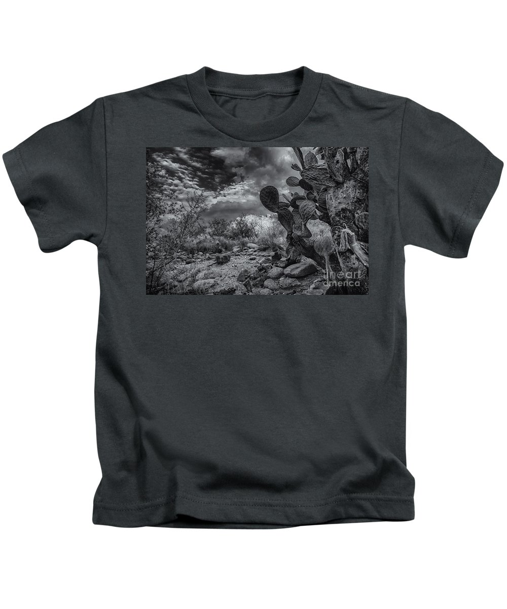 2013 Kids T-Shirt featuring the photograph Sonoran Desert 15 by Mark Myhaver