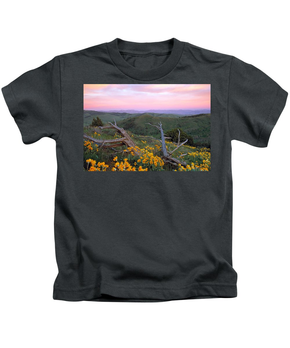 Idaho Kids T-Shirt featuring the photograph Spring Sunset by Leland D Howard