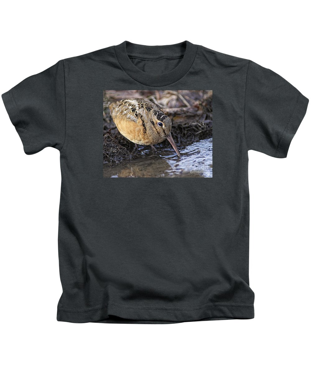 Woodcock Kids T-Shirt featuring the photograph Streamside Woodcock by Timothy Flanigan