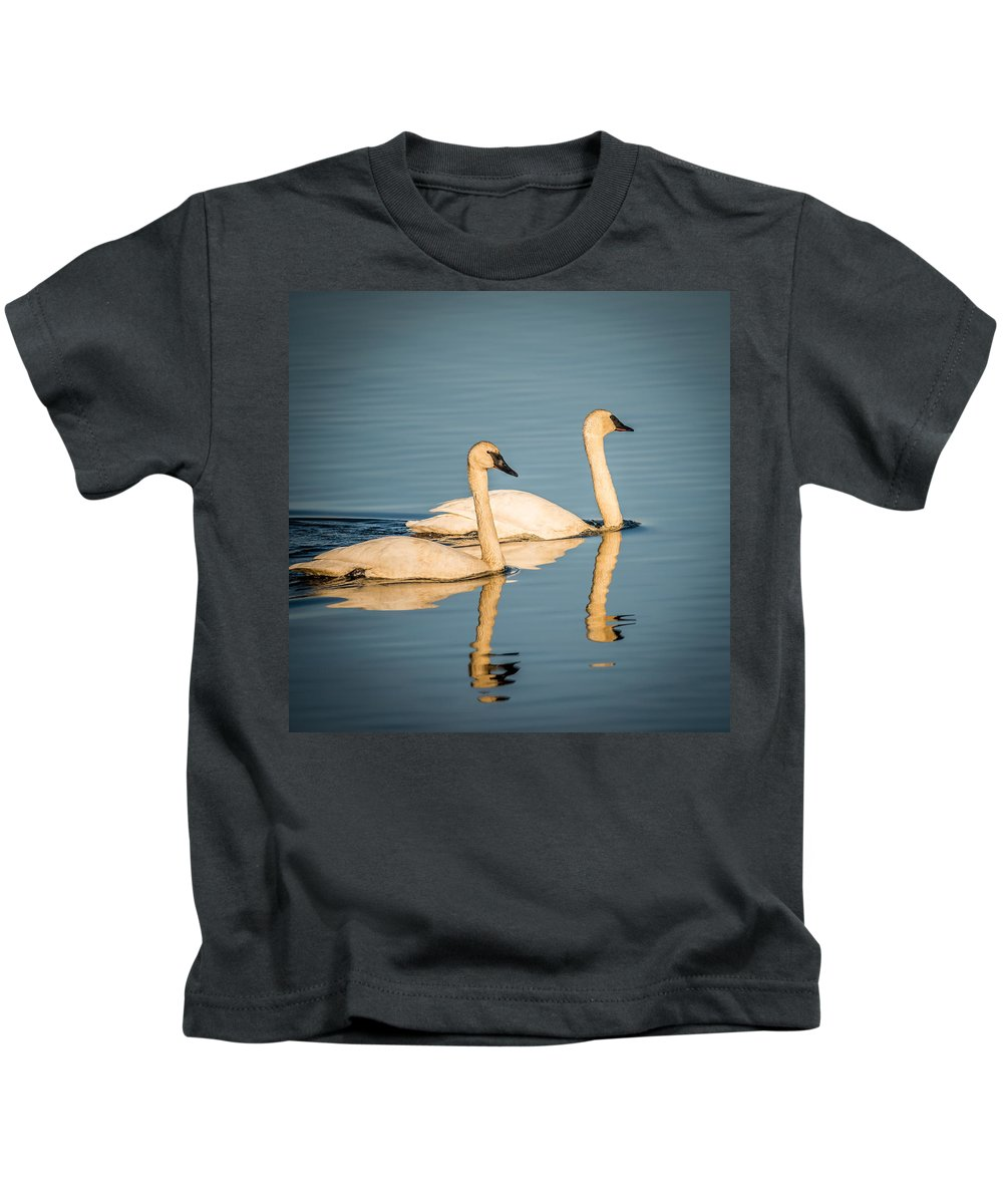 Swan Kids T-Shirt featuring the photograph Swans by Paul Freidlund