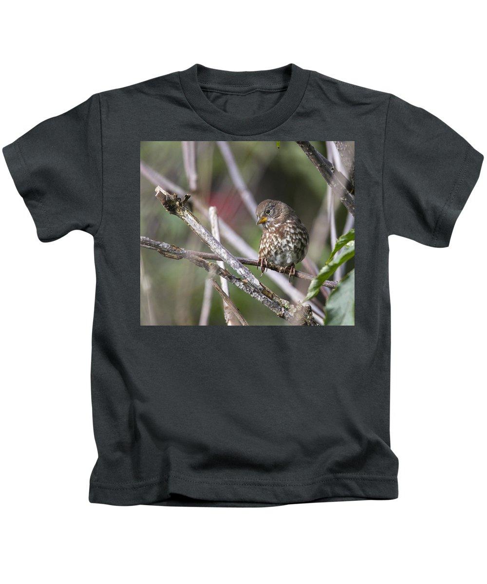 Doug Lloyd Kids T-Shirt featuring the photograph Sweetie by Doug Lloyd