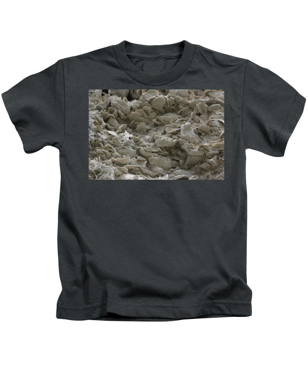 Tabby Kids T-Shirt featuring the photograph Tabby Detail by Jean Macaluso