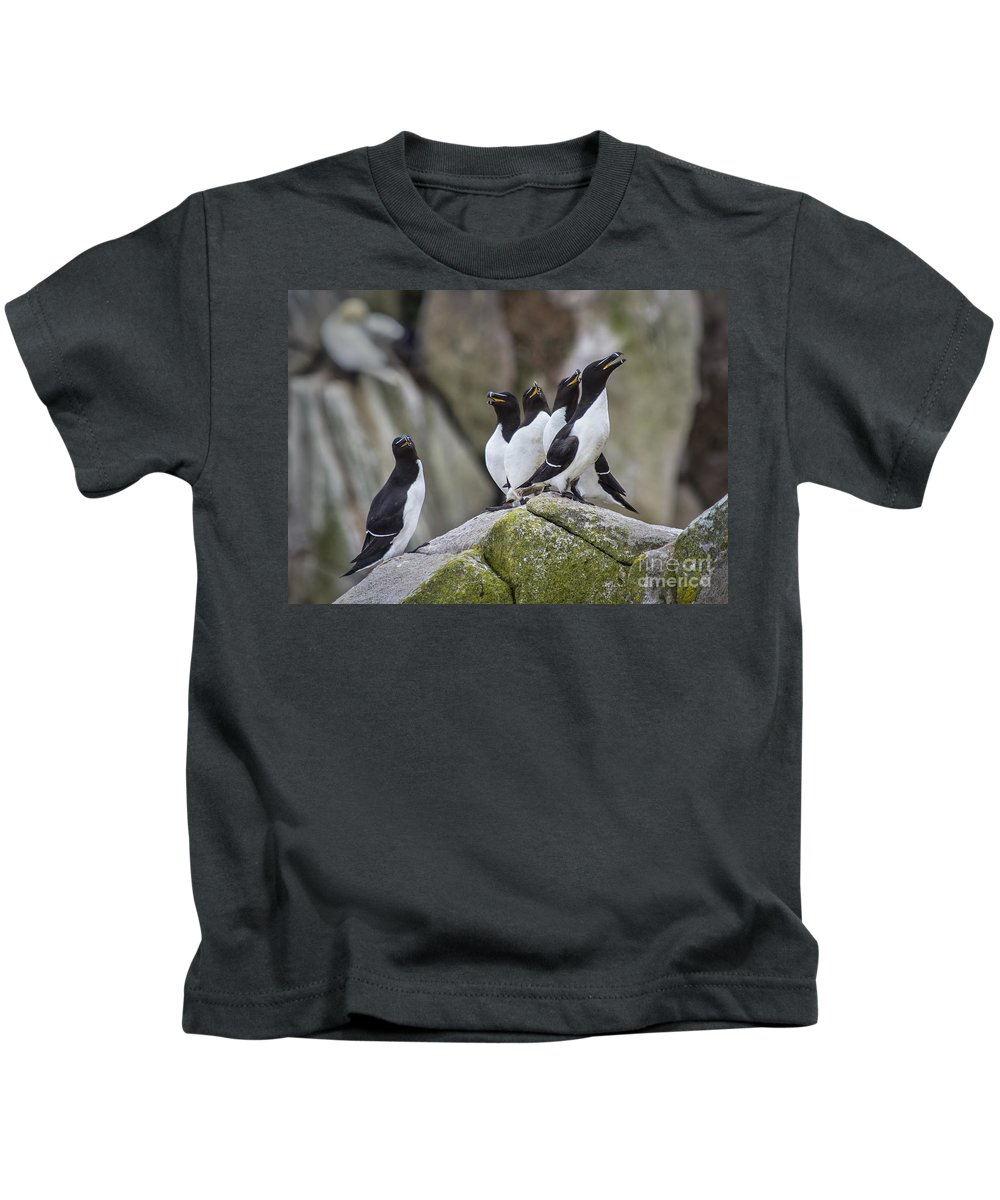 Razorbill Kids T-Shirts