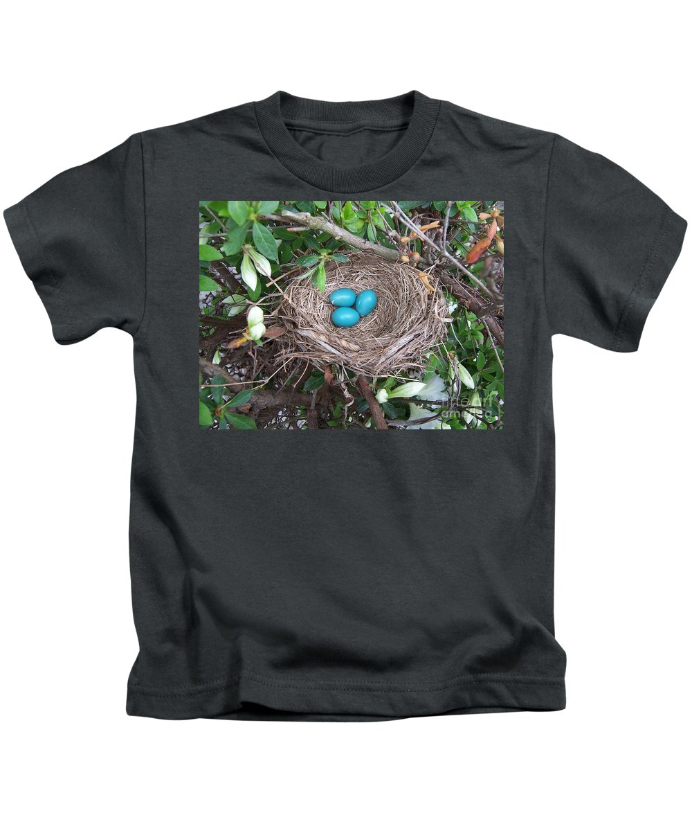 Blue Eggs Kids T-Shirt featuring the photograph The Future's Nest Egg by Julie Brugh Riffey