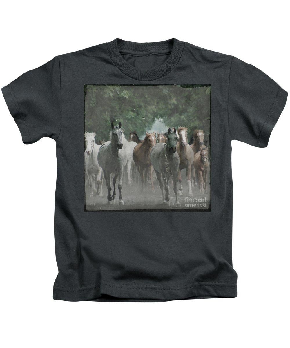 Arabian Kids T-Shirt featuring the photograph The Horsechestnut Tree Avenue by Angel Ciesniarska
