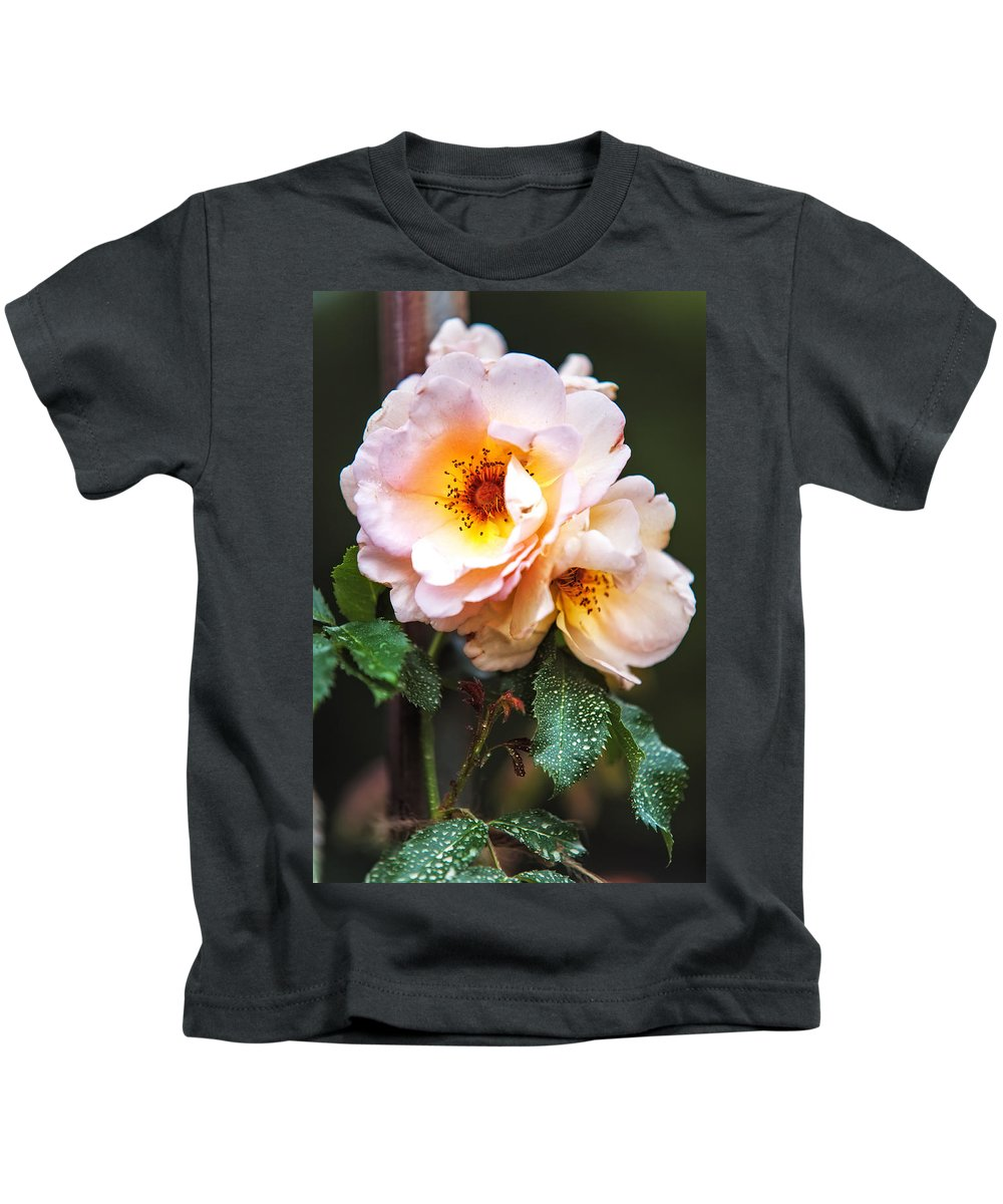 Rose Kids T-Shirt featuring the photograph The Rose With Your Name. Park Of De Haar Castle by Jenny Rainbow