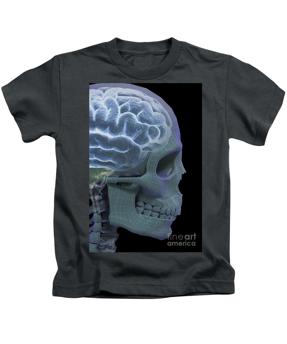 Facial Bone Kids T-Shirt featuring the photograph The Skull And Brain by Science Picture Co