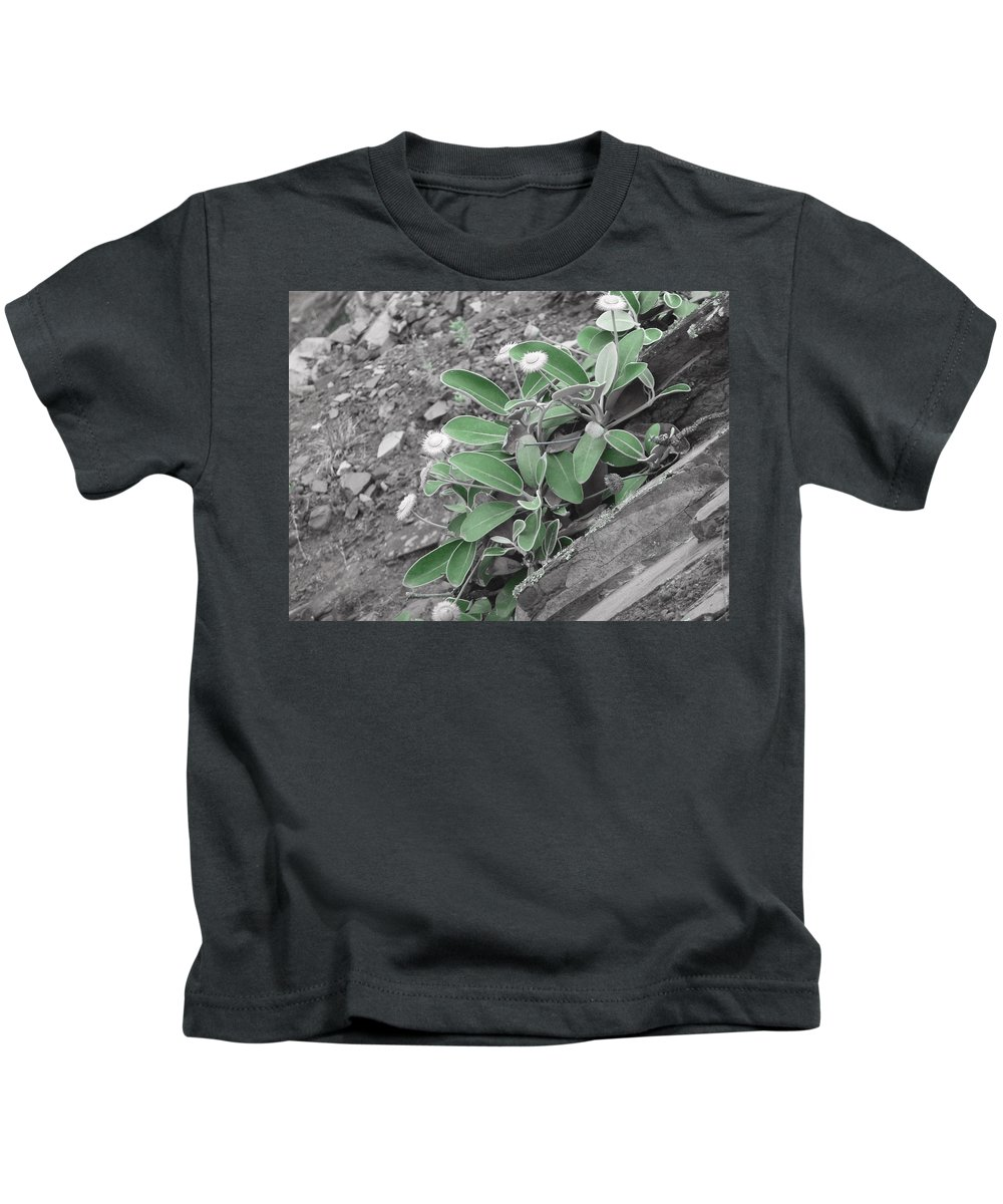 Slope Kids T-Shirt featuring the photograph The Untouchable Plant by Steve Taylor