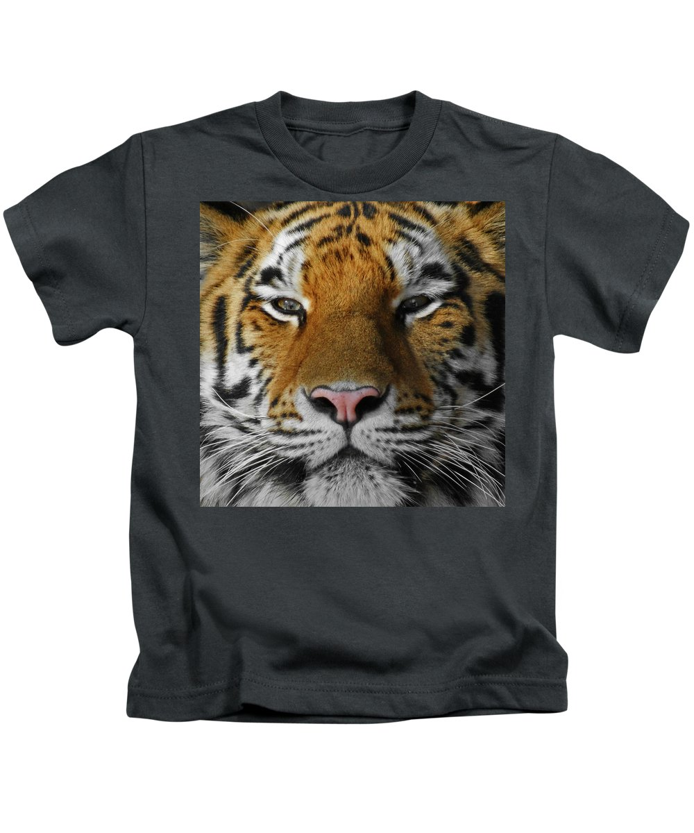 Tiger Kids T-Shirt featuring the photograph Tiger 1 by Ernie Echols