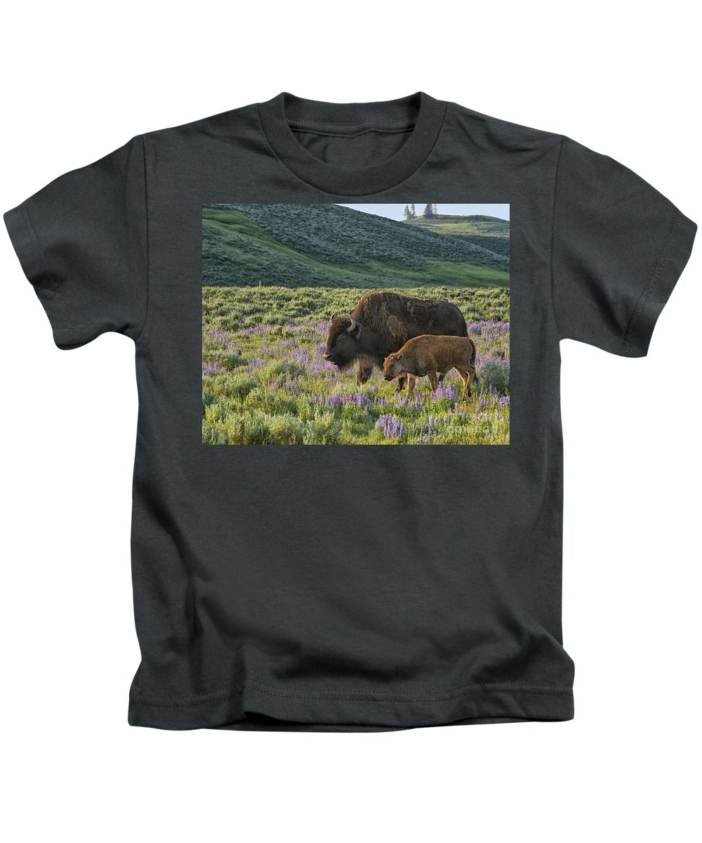 Bison Kids T-Shirt featuring the photograph Together by Claudia Kuhn