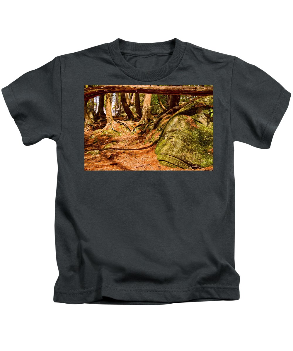 Photography Kids T-Shirt featuring the photograph Trail In A Forest, Muskoka, Ontario by Panoramic Images
