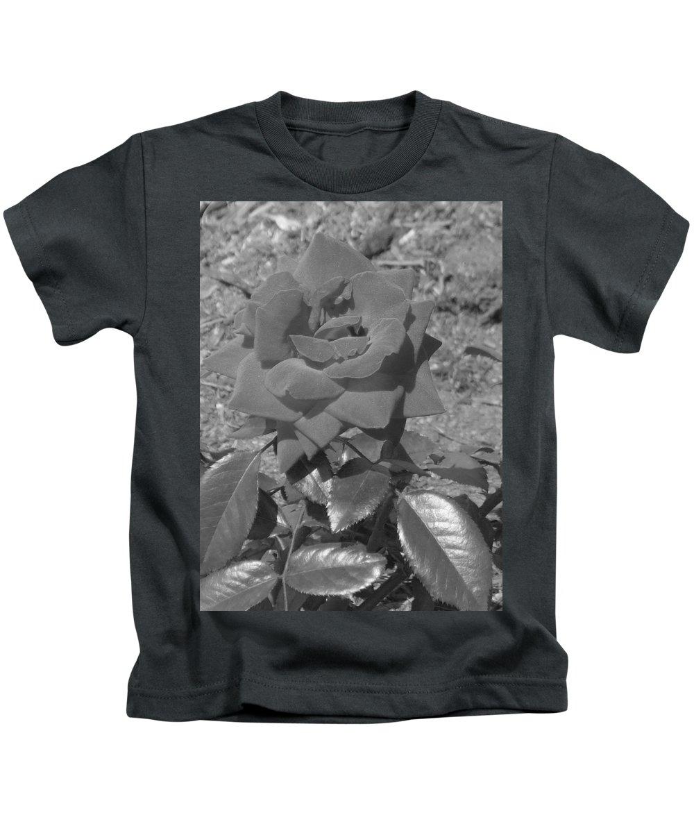 Rose Kids T-Shirt featuring the photograph Velvet Rose by Pharris Art