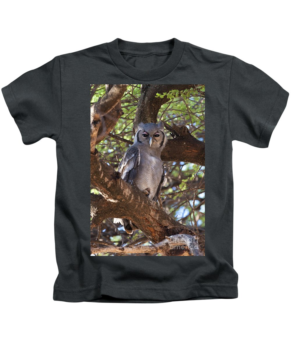 African Fauna Kids T-Shirt featuring the photograph Verreauxs Eagle Owl In Tree by John Shaw