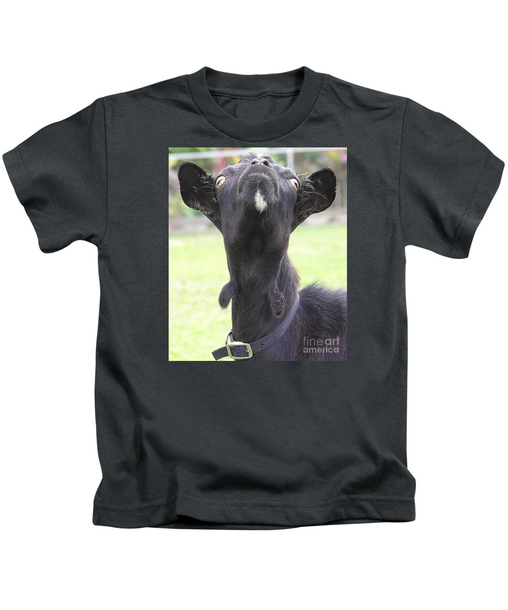 Goat Kids T-Shirt featuring the photograph Whats Up by Mary Deal