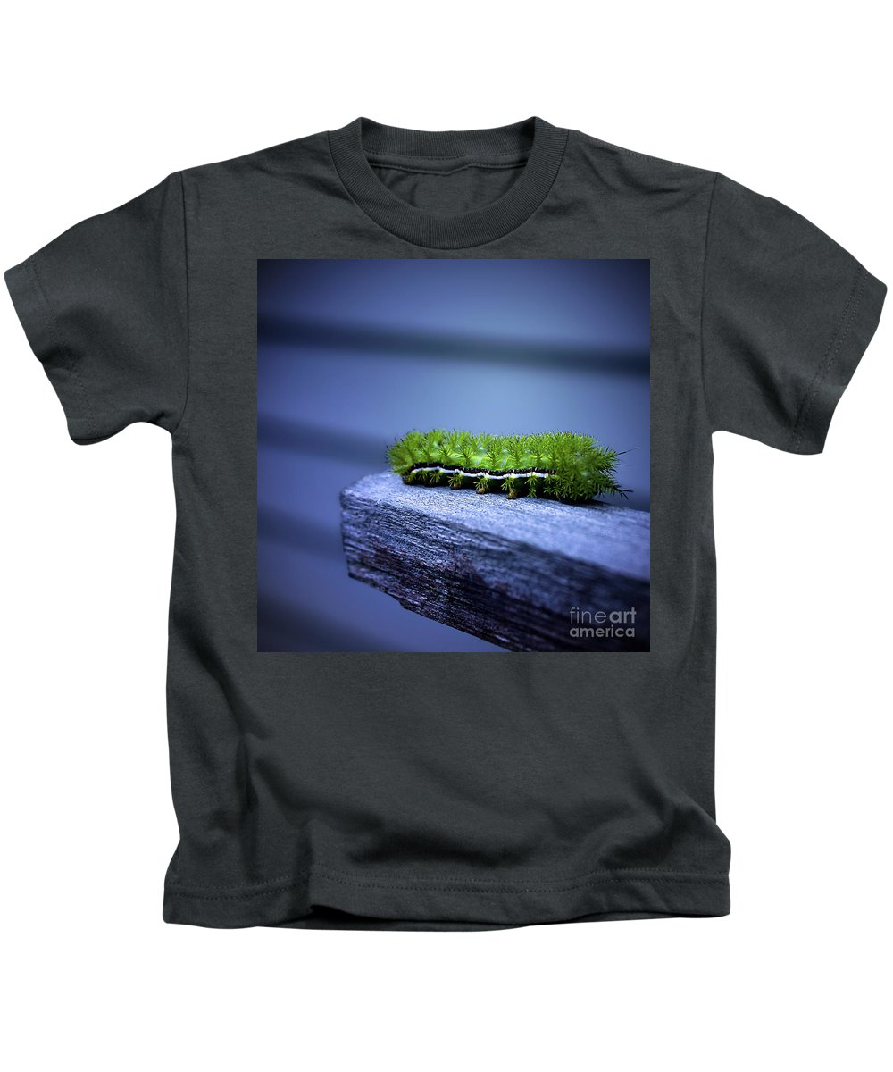 Catapillar Kids T-Shirt featuring the photograph Which Way To Go? by Trish Mistric