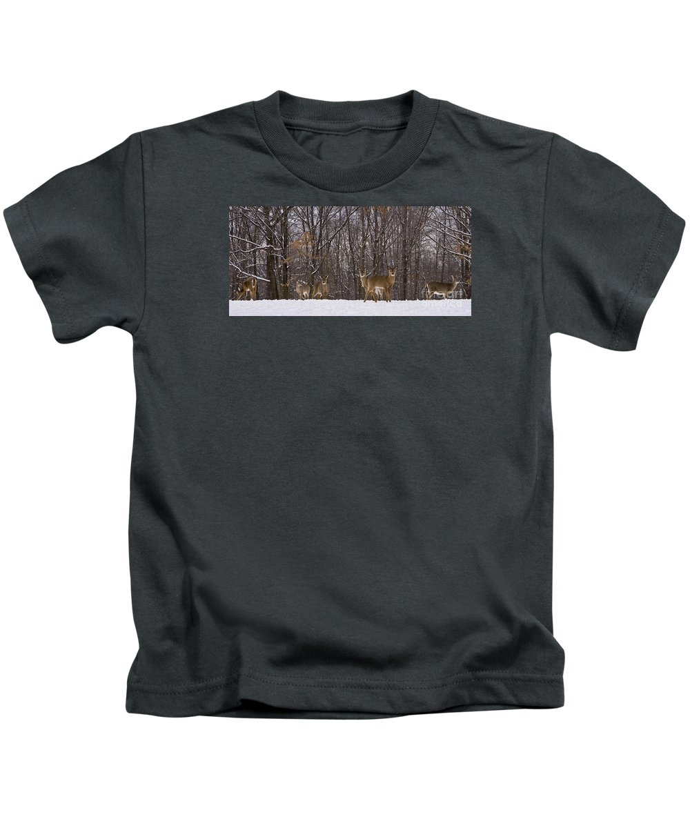 Deer Kids T-Shirt featuring the photograph White Tailed Deer by Anthony Sacco