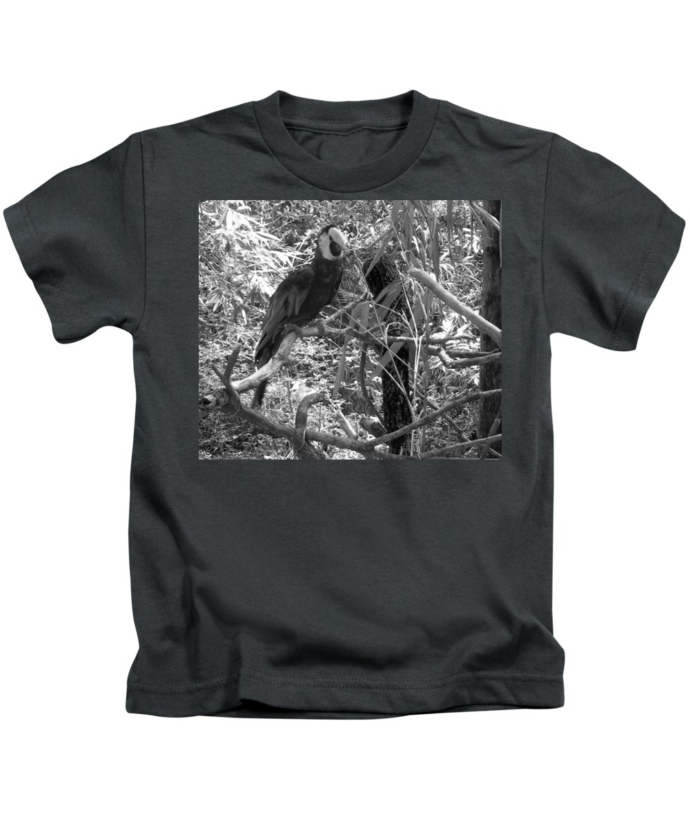 Wild Kids T-Shirt featuring the photograph Wild Hawaiian Parrot Black And White by Joseph Baril