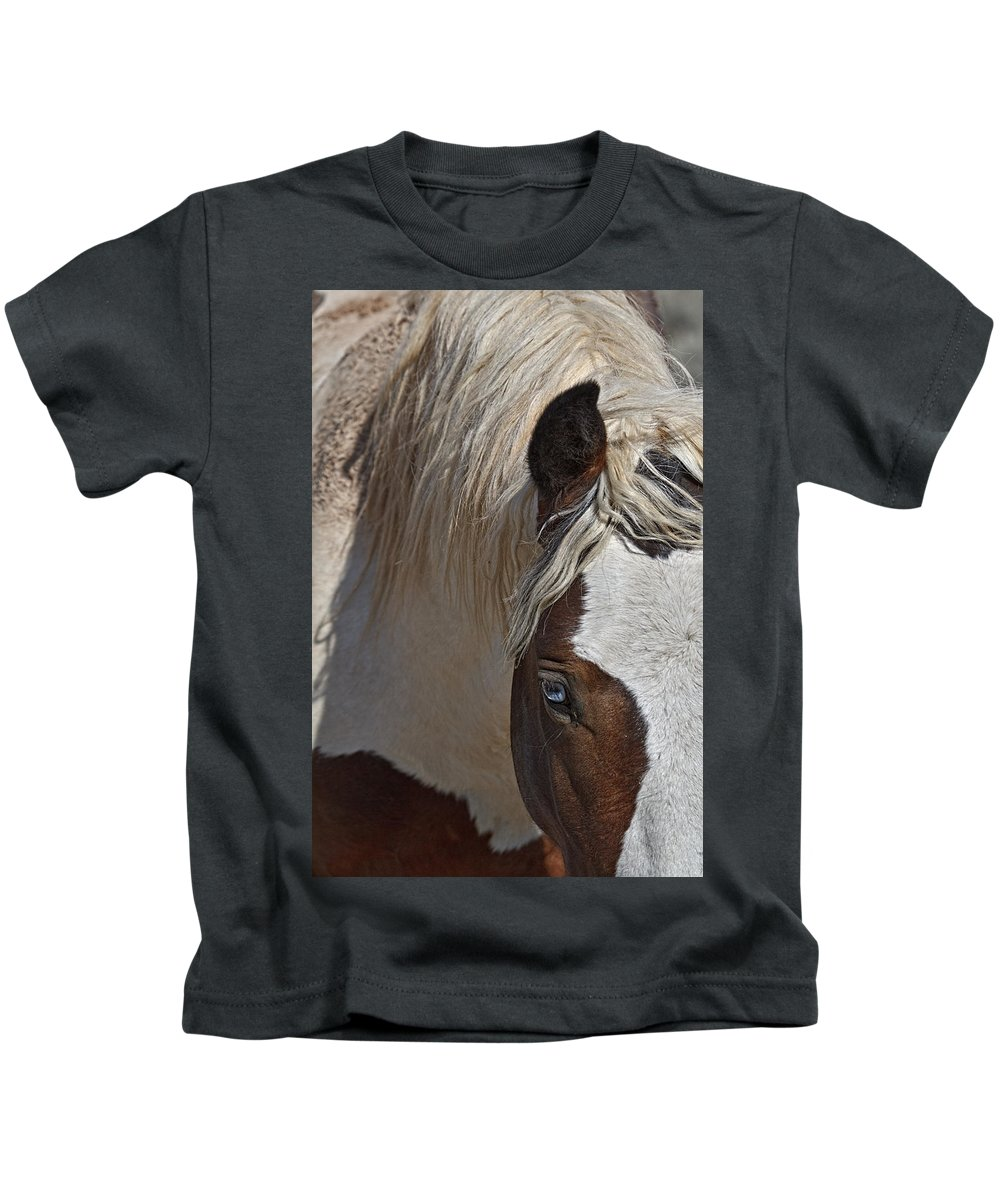 Wild Pinto Kids T-Shirt featuring the photograph Wild Pinto by Wes and Dotty Weber