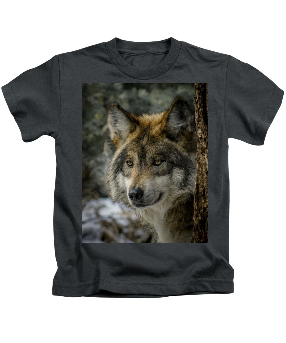 Mexican Gray Wolf Kids T-Shirts